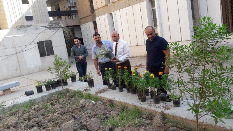 حملة تطوعية لزراعة  شتلات الازهار في أروقة الكلية